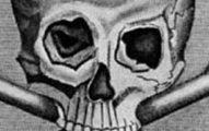 skull_bones_destacado