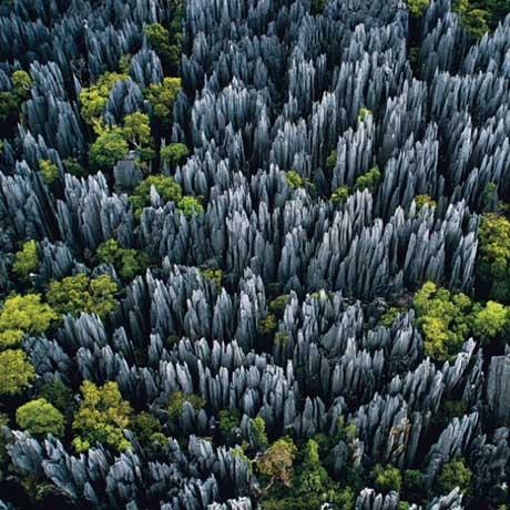 bosque-de-piedras-de-madagascar