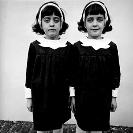 la-reencarnacion-de-las-gemelas-pollock